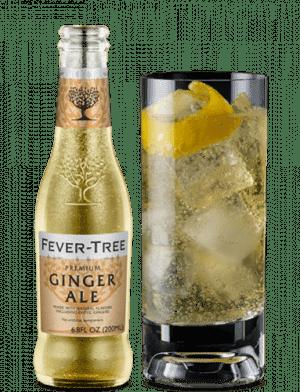 Ginger Ale 24/cs 200ml